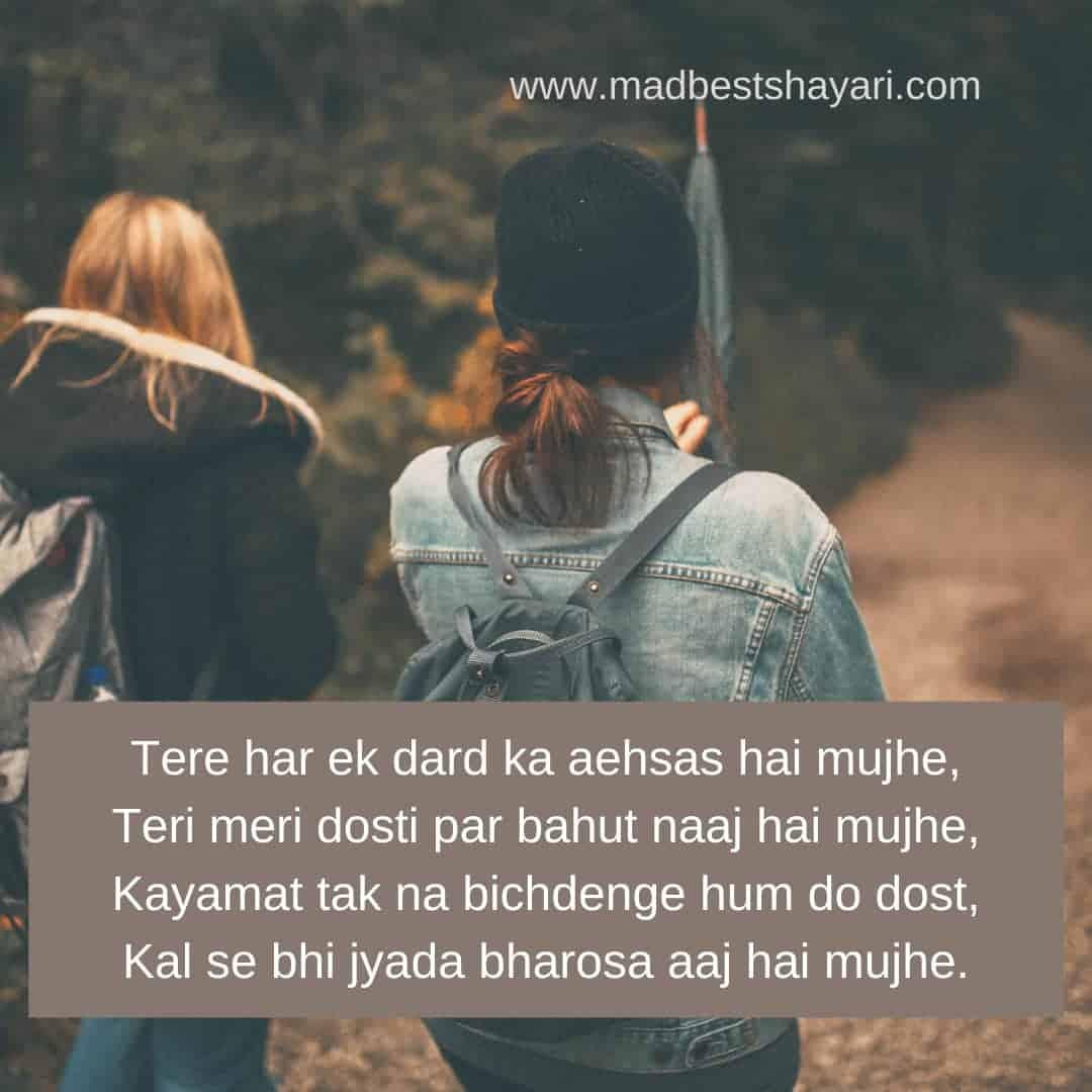 Hindi Friendship Shayari
