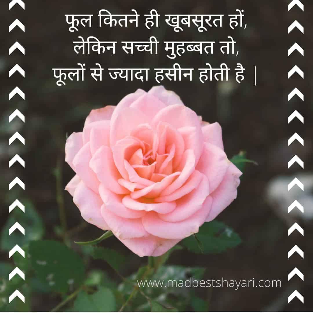 गुलाब के फूल पर शायरी