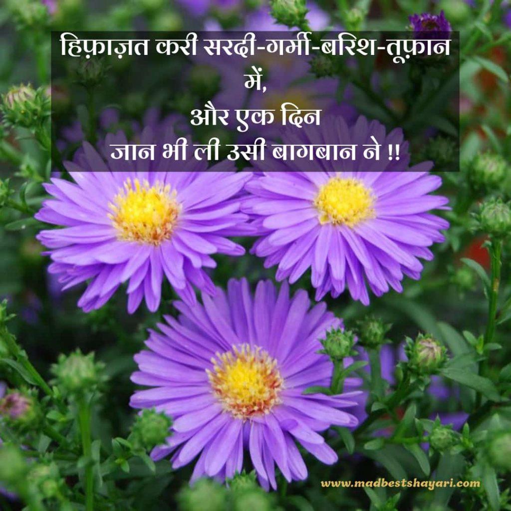 Best Baagbaan Shayari in Hindi