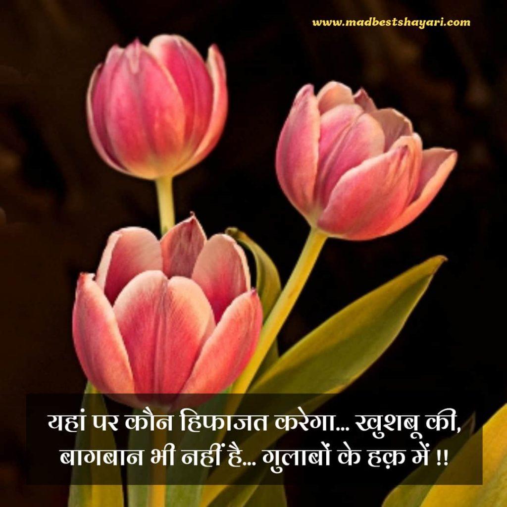 Baagbaani Shayari For Whatsapp
