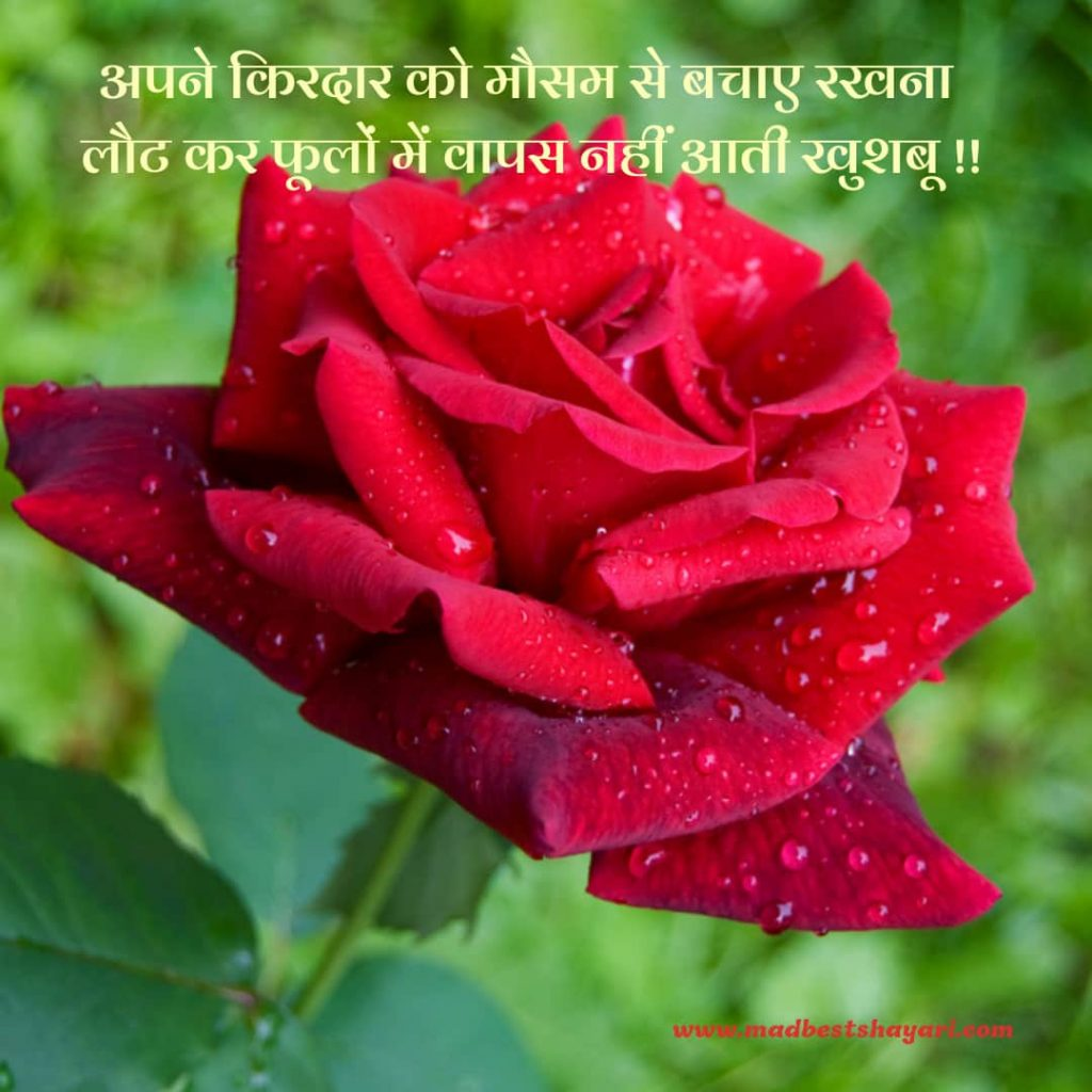 Mausam Badal Raha Hai Shayari